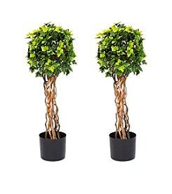 Pure Garden Set of 2 English Ivy Single Ball 30