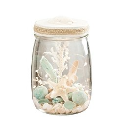 The Pomeroy Collection Glass Jar With Accent Lid With Shell On Top