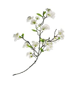 LivingQuarters Botanical Collection White Cherry Blossom Stem