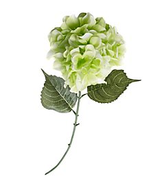 LivingQuarters Botanical Collection Green Hydrangea Stem