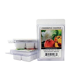A Cheerful Giver Gardenia Peach 6-Pack Fragrance Melts