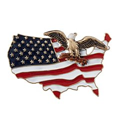 Silver Forest® Goldtone Eagle And American Flag Pin