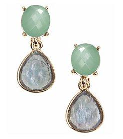 Anne Klein® Goldtone Multi Blue Clip Drop Earrings