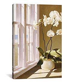 iCanvas Pot Of Orchids by Zhen-Huan Lu Canvas Print