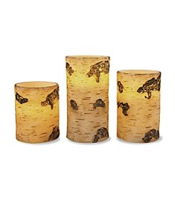 Order Home Collection® 3-pk. LED Birch Candles