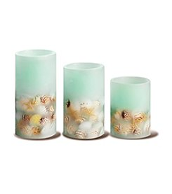 Order Home Collection® 3-pc. LED Seashell Candles