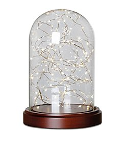 Order Home Collection® LED Cloche Lights