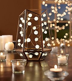 Order Home Collection® 10' Micro Diamond String Lights