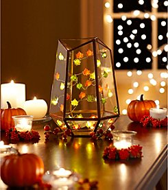 Order Home Collection® 10' Micro Harvest String Lights