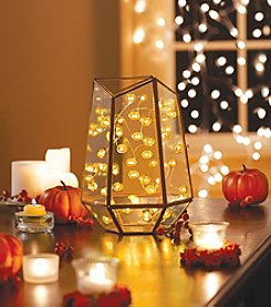 Order Home Collection® 10' Micro Pumpkin String Lights