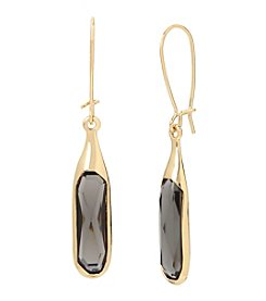 Robert Lee Morris Soho™ Goldtone Faceted Stone Long Drop Earrings