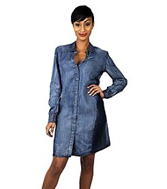 Standards & Practices Tencel Denim Shirt Dress
