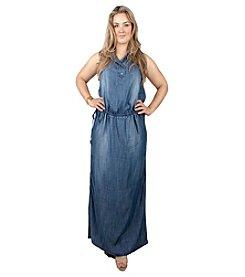 Standards & Practices Plus Size Maxi Tencel Dress