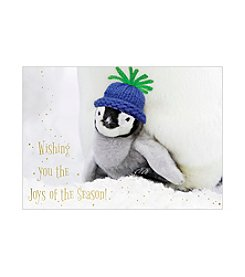 Masterpiece Penguin With Hat Boxed Holiday Cards