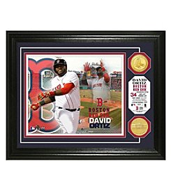 MLB® Boston Red Sox David Ortiz Photo Mint