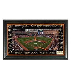 MLB® Baltimore Orioles 2016 Signature Field