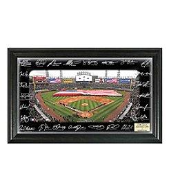 MLB® Chicago White Sox 2016 Signature Field