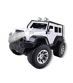 Black Series RC Off Road Explorer Car