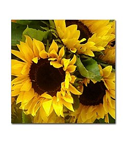 Trademark Fine Art Amy Vangsgard 'Sunflowers' Canvas Art