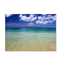 Trademark Fine Art Pierre Leclerc 'Hawaii Blue Beach' Canvas Art