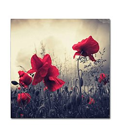 Trademark Fine Art Philippe Sainte-Laudy 'Red For Love' Canvas Art