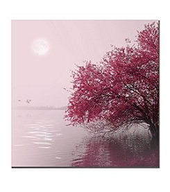 Trademark Fine Art Philippe Sainte-Laudy 'Full Moon on the Lake' Canvas Art