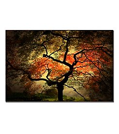 Trademark Fine Art Philippe Sainte-Laudy 'Japanese' Canvas Art
