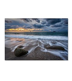 Trademark Fine Art Mathieu Rivrin 'The Song of Water' Canvas Art