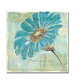 Trademark Chris Paschke 'Spa Daisies II' Canvas Art