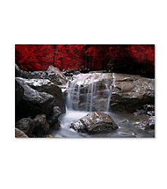 Trademark Fine Art Philippe Sainte-Laudy 'Red Vison' Canvas Art