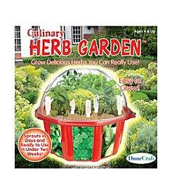 DuneCraft Culinary Herb Garden™ Dome Terrarium