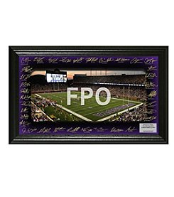 NFL® Minnesota Vikings Signature Gridiron Collection by The Highland Mint