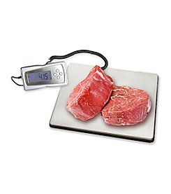 Excalibur Stainless Steel Digital Scale