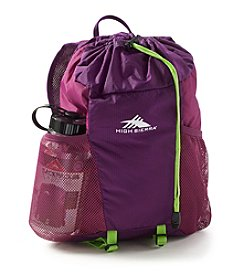 High Sierra® 15L Backpack In A Bottle