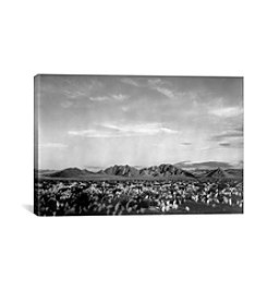 Near Death Valley National Monument by Ansel Adams Canvas Print