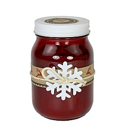 Deco Glow 12-oz. Rustic Apple Spice Holiday Mason Jar Candle