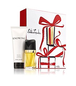 Estee Lauder Essence Of Knowing Gift Set (A $77 Value)