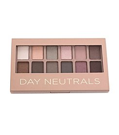 Tricoastal Neutral Eyeshadow Palette