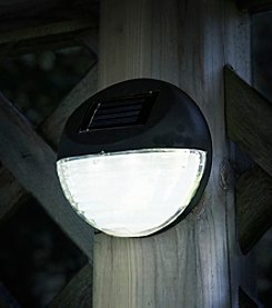 Pure Garden Set of 4 Black Round Solar LED Lights