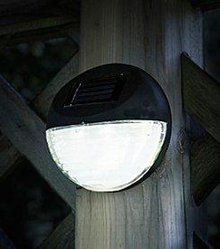 Pure Garden Set of 4 Black Round Solar LED Lights