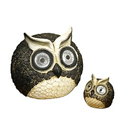 Smart Solar Set of 2 Owl Accents