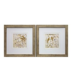 Natural Spring Birds Framed Art Set of 2
