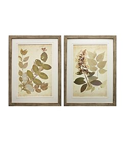 Natural Leaf Botanical Framed Art Set of 2