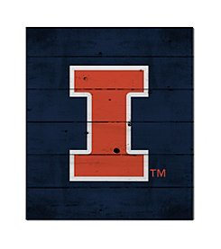 Kindred Hearts NCAA® Illinois Fighting Illini Logo Pallet