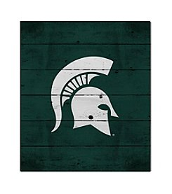Kindred Hearts NCAA® Michigan State Spartans Logo Pallet
