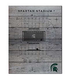 Kindred Hearts NCAA® Michigan State Spartans Stadium Pallet