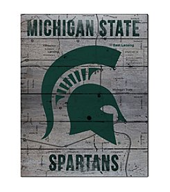 Kindred Hearts NCAA® Michigan State Spartans Road To Victory Pallet