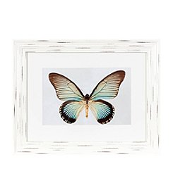 LivingQuarters Butterfly Wall Art