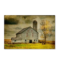 Trademark Fine Art Lois Bryan 'Old Barn on Stormy Afternoon' Canvas Art