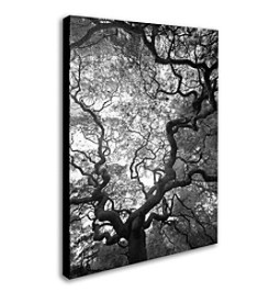 Trademark Fine Art CATeyes 'Speaking' Canvas Art